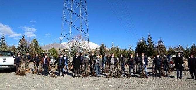Develi Belediyesi 12 bin ceviz ağacı dağıttı
