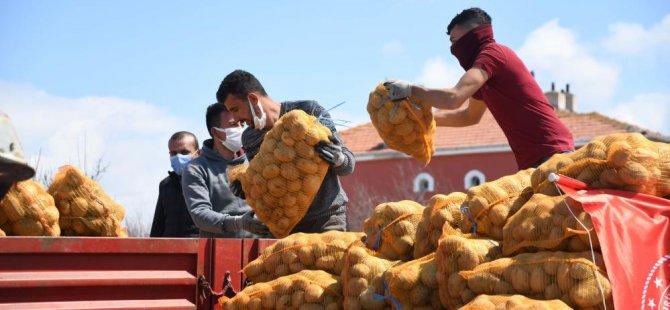 Kayseri TMO depolardaki patatesleri almaya başladı