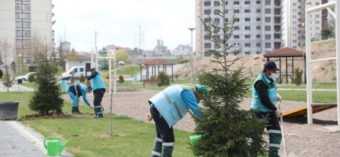 Kocasinan'da ağaçladırma seferberliği