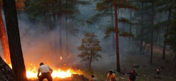 Yahyalı'daki orman yangını devam ediyor