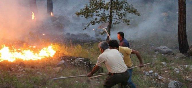 Kayseri'de ormanlık alanlara giriş yasaklandı