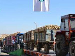 Yeşilhisar'da Pancar kavgası