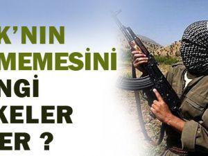 PKK'nın Bitmemesini Hangi Ülkeler İster?