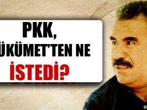 PKK'nın hükümetten talebi ne?