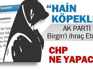 CHP'li Önay Taşdelen Başörtülülere 'Nankör Köpekler' dedi