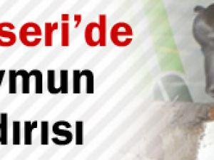 Kayseri'de 2 çocuğa maymun saldırdı