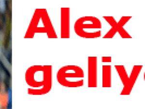 Alex geliyor!..