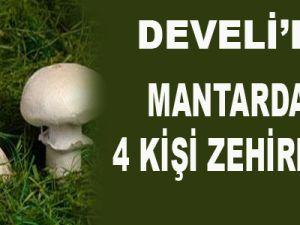 DEVELİ'DE MANTARDAN 4 KİŞİ ZEHİRLENDİ