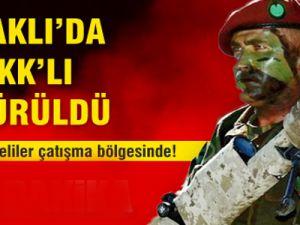 Bordo Bereliler Çatışma Bölgesinde!