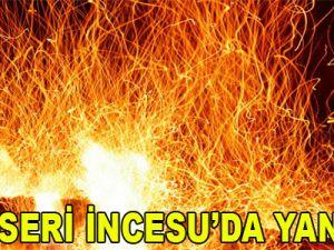 KAYSERİ İNCESU'DA YANGIN