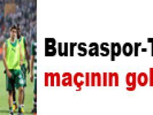 Bursaspor-Twente maçının golleri! Video