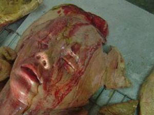 Tomarza Akdere'de Şüpheli Ölüm