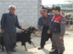 Hayvan Otlatma Meselesinden Çıkan Kavgada Bir Kişi Yaralandı