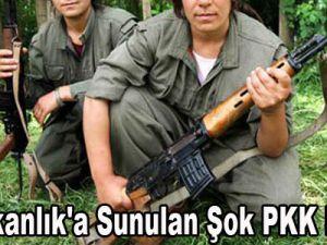 Başbakanlık'a Sunulan Şok PKK Raporu