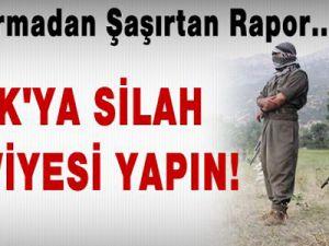 Jandarmadan Şaşırtan Rapor...PKK'ya silah takviyesi yapın!