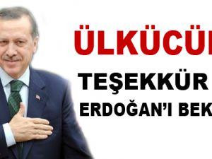 Ülkücüler teşekkür için Erdoğan'ı bekliyor
