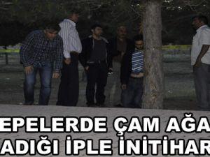 Kayseri'de Çam Ağacına Bağladığı İple İntihar Etti