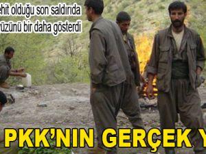 İŞTE PKK'NIN GERÇEK YÜZÜ