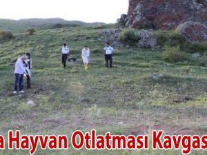 Sivas'ta Hayvan Otlatması Kavgası: 2 Ölü