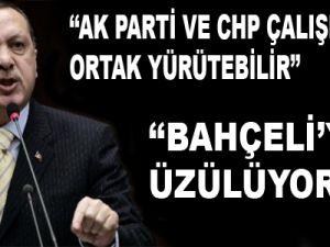 Erdoğan: Ortak Yürütülebilir