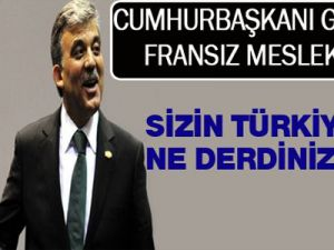 Cumhurbaşkanı Abdullah Gül 'Sizin Türkiye ile ne derdiniz var?'