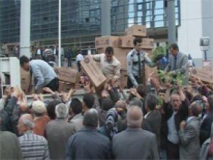 KOCASİNAN BELEDİYESİ 50 BİN DOMATES FİDESİ DAĞITTI