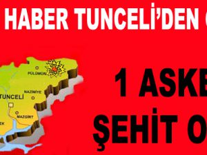 Tunceli'nde Çatışma: 1 Şehit