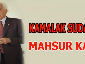 KAMALAK SUDAN'da MAHSUR KALDI