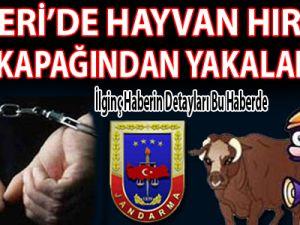 KAYSERİ'DE HAYVAN HIRSIZI JANT KAPAĞINDAN YAKALANDI