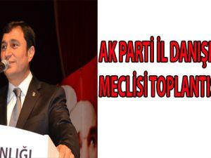 AK PARTİ İL DANIŞMA MECLİSİ TOPLANTISI YAPILDI