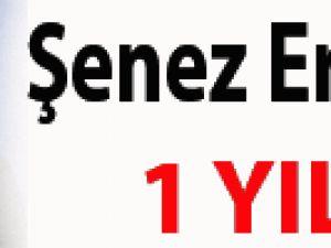 Şenes Erzik 1 yıl TFF başkanı olacak!