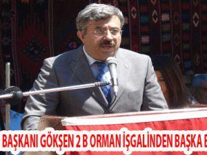 """""""2B ORMAN İŞGALİNDEN BAŞKA BİR ŞEY DEĞİL"""""""
