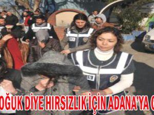 Kayseri Soğuk Diye Hırsızlık İçin Adana'ya Gitmişler