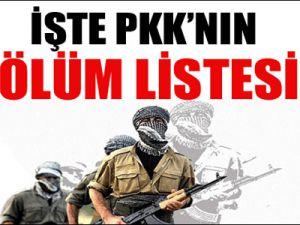 İşte PKK'nın ölüm listesi