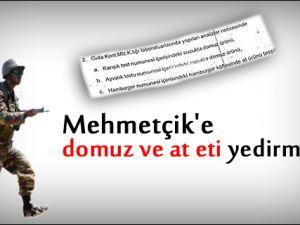 Mehmetçik'e domuz ve at eti yedirmişler