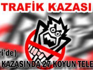TRAFİK KAZASINDA 27 KOYUN TELEF OLDU
