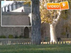 Çatışma anının yeni görüntüleri - Video