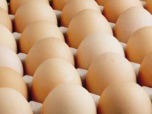 Kayseri'de toptan yumurta fiyatları düştü