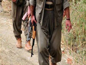 Yakalanan PKK'lılardan korkunç itiraf!