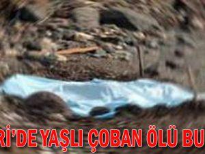 Kayseri'de Yaşlı Çoban Ölü Bulundu