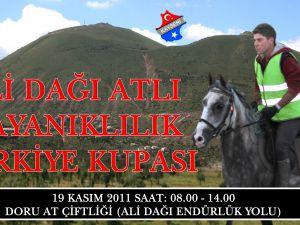 Talas Ali Dağı Atlı Dayanıklılık Kupası