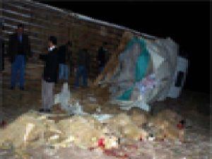 Sivas'ta Kurbanlık Hayvan Taşıyan Kamyon Devrildi: 3 Yaralı