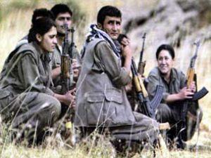 Öldürülen PKK'lılar Bakın Nereli Çıktı?