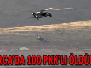 Çukurca'da 100 PKK'lı Öldürüldü