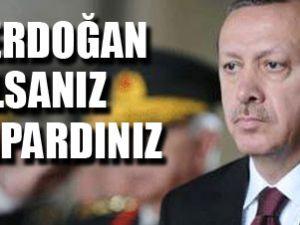 Siz Erdoğan olsanız ne yapardınız?