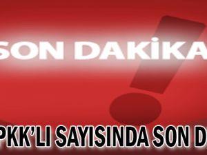 Ölen PKK'lı sayısında son durum