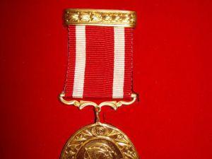 Şehit ve Gazilere, Devlet Övünç Madalyası