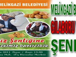 MELİKGAZİ/GİLABORU VE CEVİZ ŞENLİĞİ&#8207