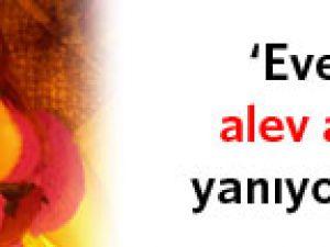 PANPİŞ ALEV ALEV YANIYORUM