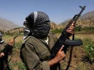 Bingöl'de kaçan PKK'lılar yakalandı!